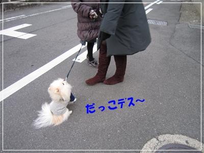 b0167519_1633212.jpg