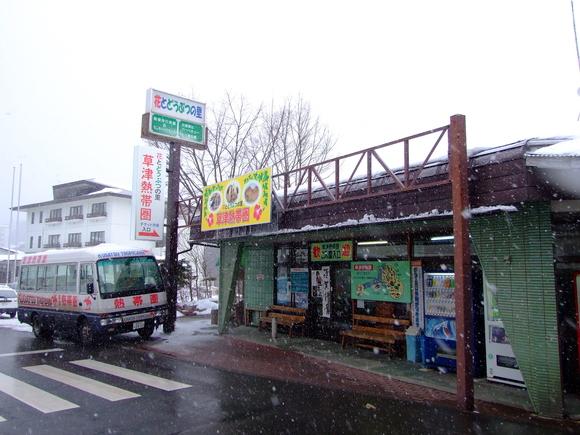 おせちもいいけど、草津熱帯圏もネ☆_a0179837_244622.jpg