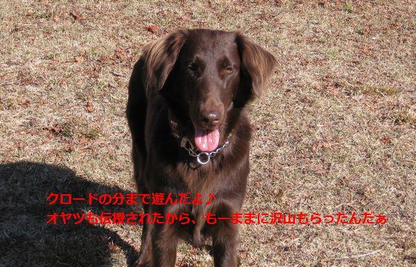 b0148945_234959.jpg