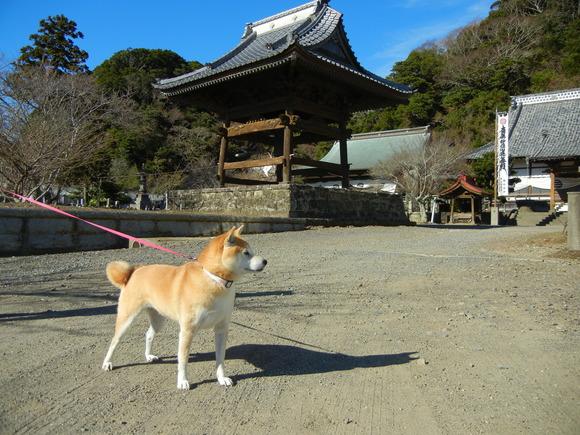 2011年1月2日(日)初詣に行ってきたよ~!_f0060461_14345516.jpg