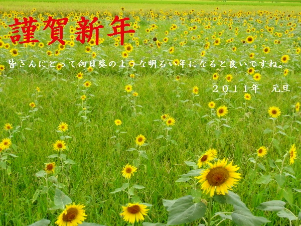 c0050380_18491849.jpg