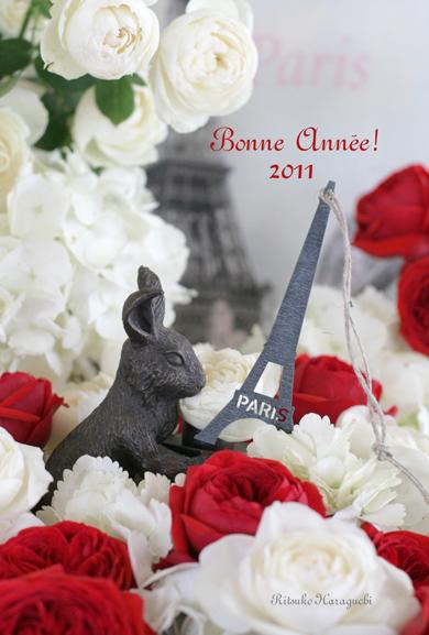 Bonne Année  2011_f0127281_12493438.jpg