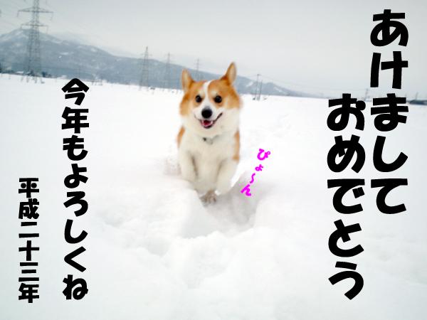 f0164499_10143186.jpg
