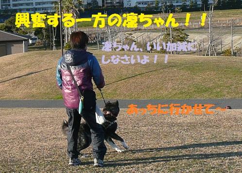 f0121712_1453510.jpg