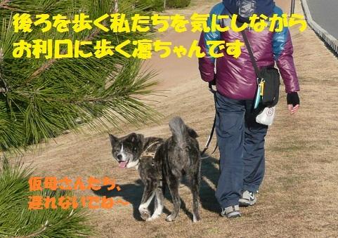 f0121712_215436.jpg