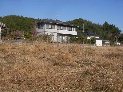 宮崎自然農園・12月19日。拡げた田んぼの草刈。_b0181417_11512388.jpg