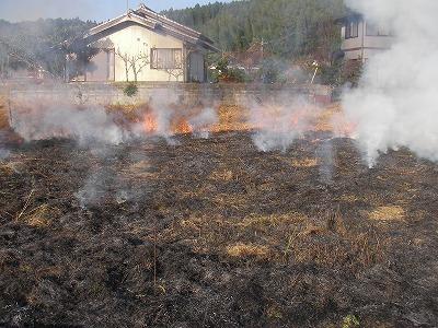 宮崎自然農園・12月19日。拡げた田んぼの草刈。_b0181417_11554654.jpg