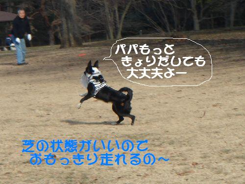 b0101991_19431518.jpg