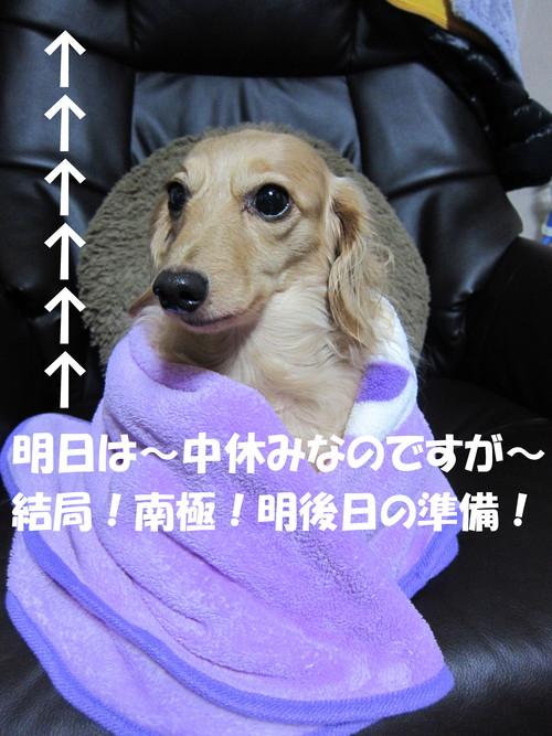 b0200291_2148735.jpg