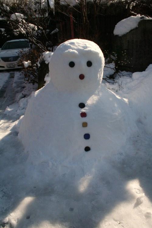 雪解けの大原 三千院_c0100195_22291337.jpg