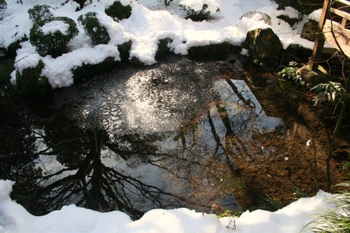 雪解けの大原 三千院_c0100195_22335823.jpg
