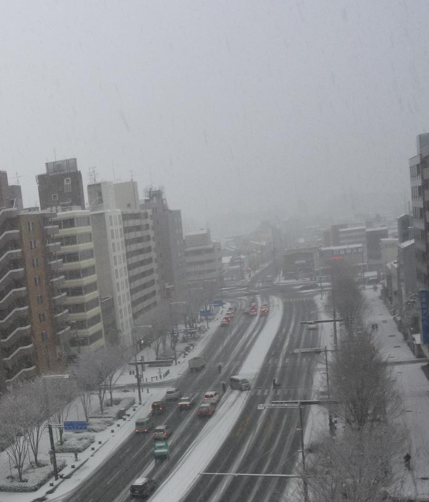 雪。_e0170538_19513422.jpg