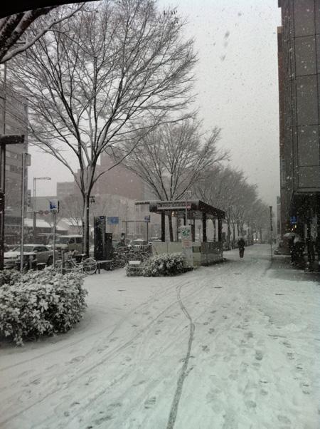 雪。_e0170538_19543317.jpg