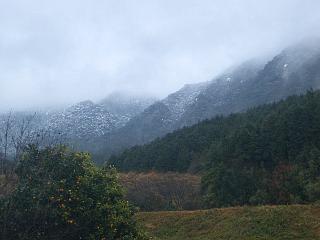 裏山は雪景色_e0022642_15403461.jpg