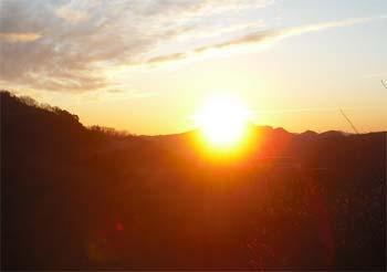 A HAPPY NEW YEAR 2011!!_b0160554_1784721.jpg