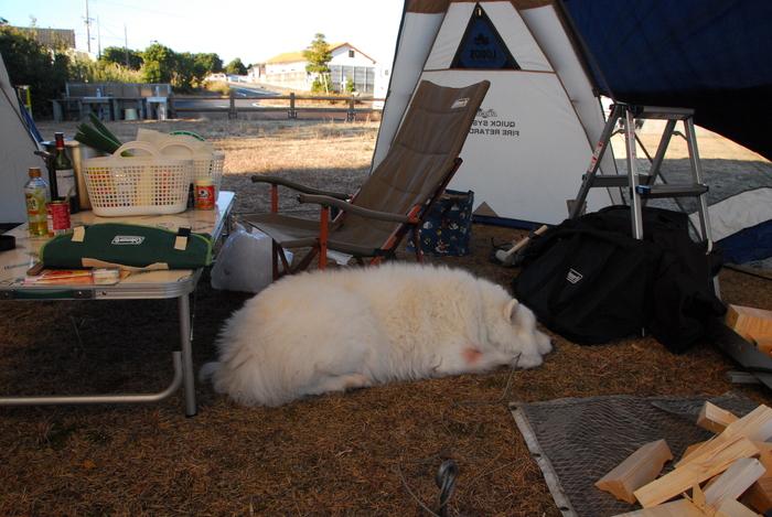 年末キャンプに行ってきました。_a0049296_18541297.jpg