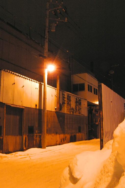 雪道を照らす