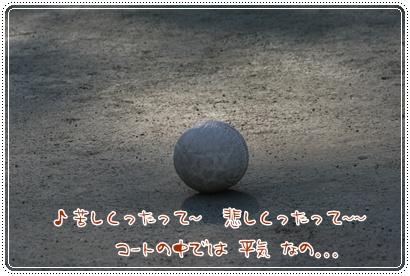 蹴鞠初(けまりはじめ)_c0049950_20212354.jpg