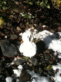初雪!_d0118072_1353660.jpg