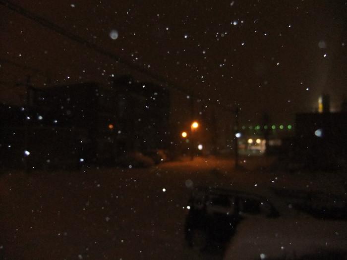 札幌は昨日から雪が降り続いております。_c0226202_2311418.jpg