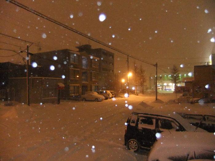 札幌は昨日から雪が降り続いております。_c0226202_2313165.jpg