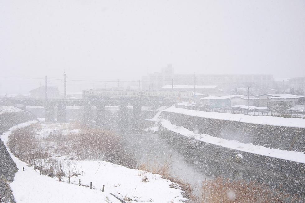 雪景色_b0190710_23594154.jpg