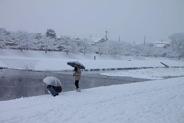 雪景色 鴨川_e0048413_1691528.jpg