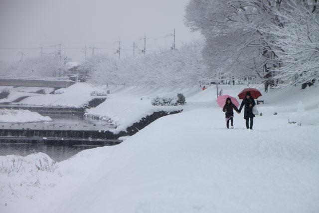雪景色 鴨川_e0048413_169358.jpg