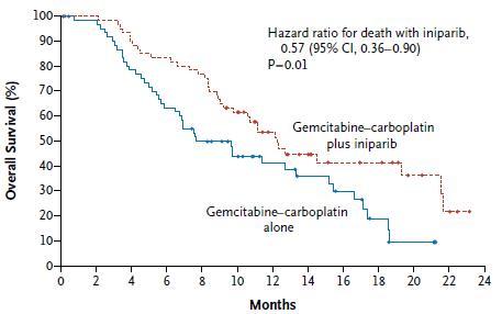 トリプルネガティブの転移性乳癌におけるPARP阻害薬:iniparib_e0156318_12185382.jpg