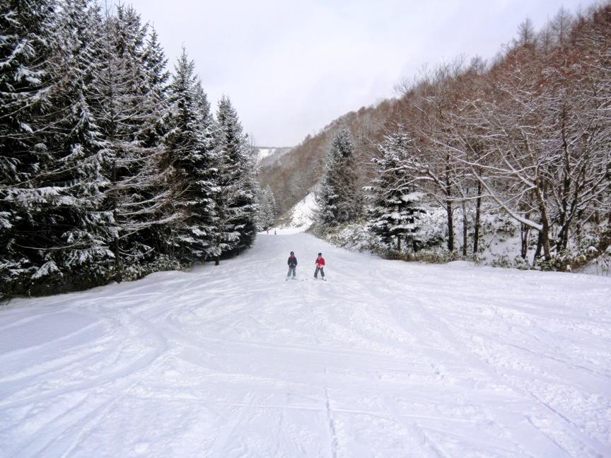 スキー!_b0048834_8212846.jpg