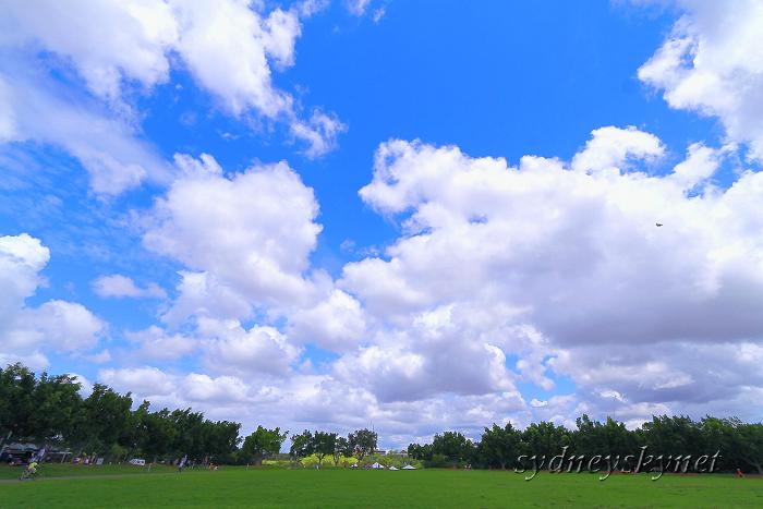 ある晴れた日、公園にて_f0084337_22175167.jpg
