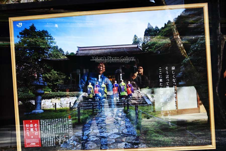 京都、日帰り写真撮影逃避行 ~京都大原、宝泉院、お抹茶編~_b0157849_2121848.jpg