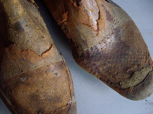 靴型_e0111789_10444561.jpg