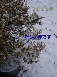 b0200310_23145219.jpg