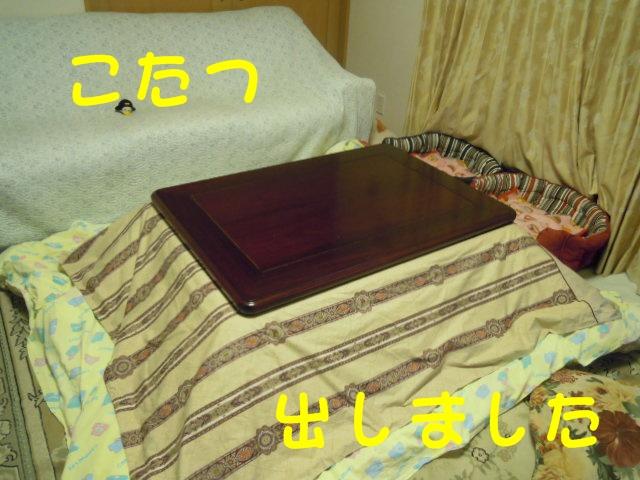 c0166622_21265148.jpg
