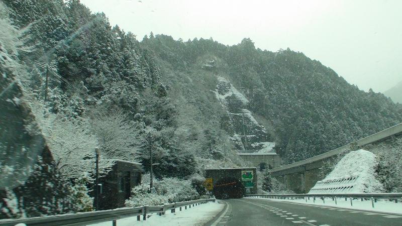 昨日は山は雪! 真鯛・チダイ・沖ボラ・トビウオ_a0132631_19533070.jpg