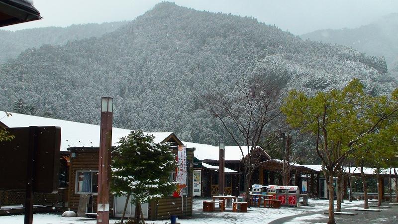 昨日は山は雪! 真鯛・チダイ・沖ボラ・トビウオ_a0132631_19535868.jpg