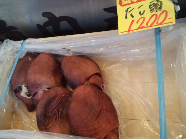 札幌の思い出☆ カナコと市場_c0151965_19414971.jpg