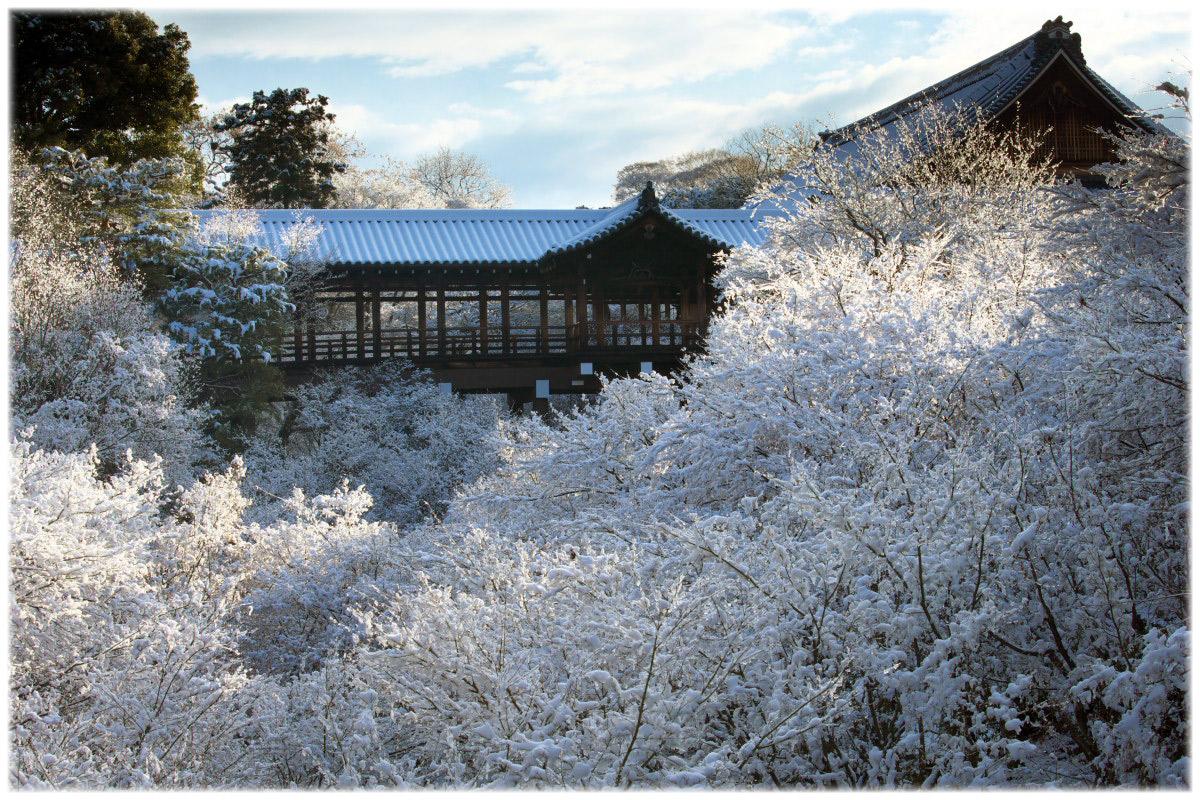 雪景色 <東福寺>_f0021869_413474.jpg