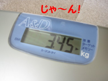 b0193480_1291264.jpg