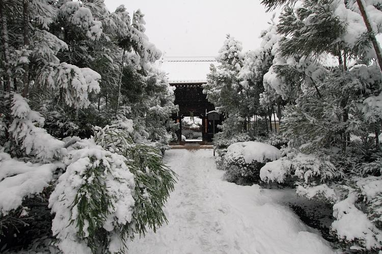 雪の源光庵_e0051888_6115131.jpg