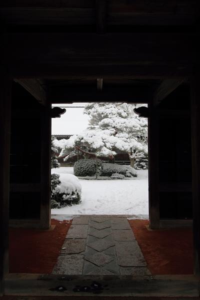 雪の源光庵_e0051888_612117.jpg