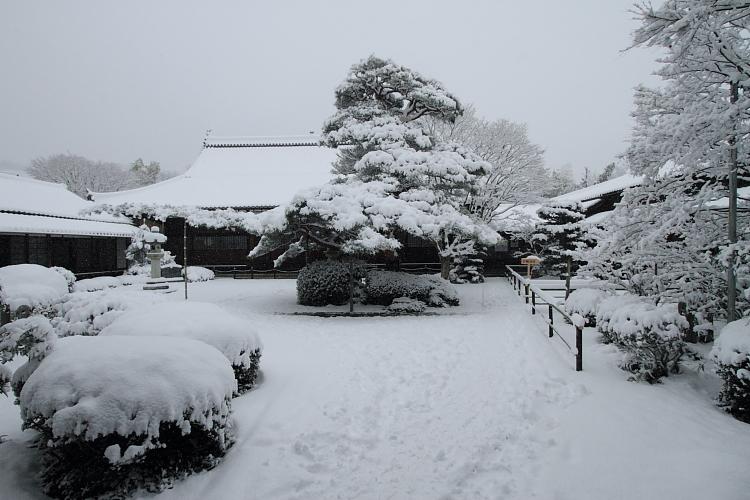 雪の源光庵_e0051888_6122944.jpg