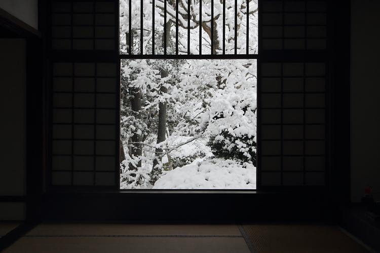 雪の源光庵_e0051888_6155619.jpg