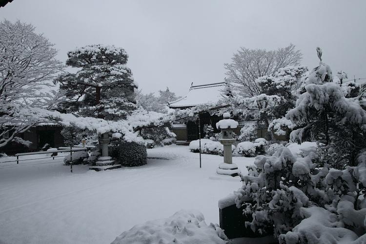 雪の源光庵_e0051888_6171068.jpg