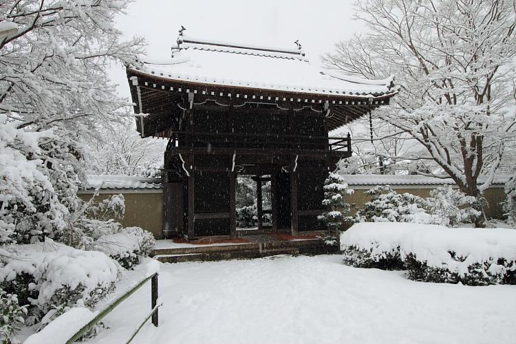 雪の源光庵_e0051888_6172818.jpg