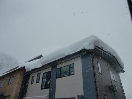 冬_a0128408_18114567.jpg