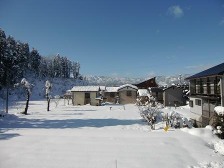 冬_a0128408_18125280.jpg