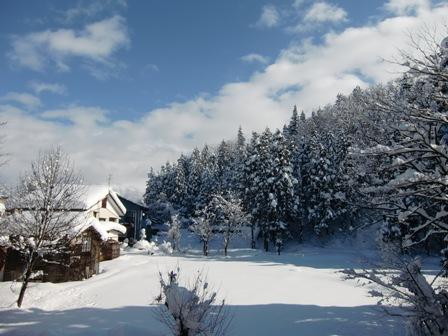 冬_a0128408_18133743.jpg