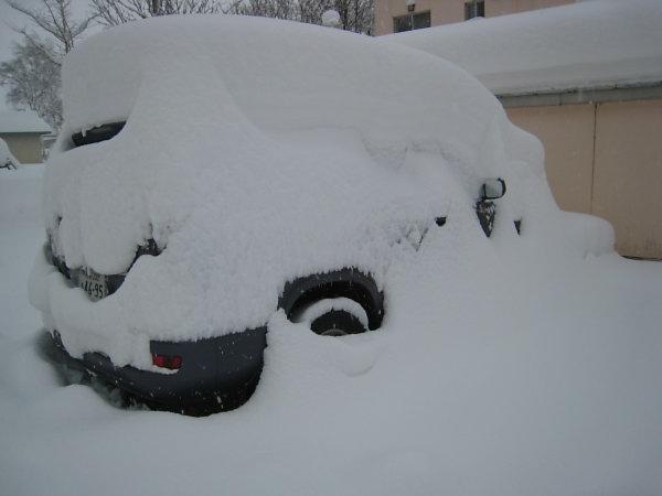 雪・雪・雪_a0071514_16143919.jpg